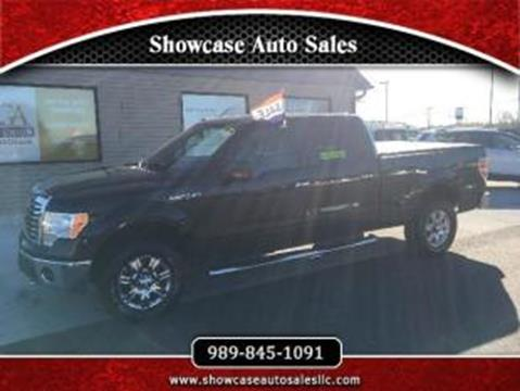 2010 Ford F-150 for sale in Chesaning, MI