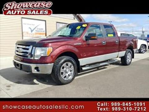 2009 Ford F-150 for sale in Chesaning, MI