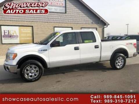 2010 Ford F-150 for sale at SHOWCASE AUTO SALES LLC in Chesaning MI