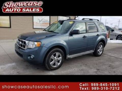 2010 Ford Escape XLT for sale at SHOWCASE AUTO SALES LLC in Chesaning MI