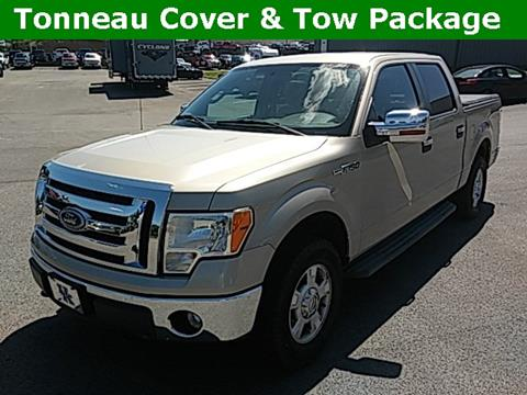 2010 Ford F-150 for sale in Elizabethtown, KY
