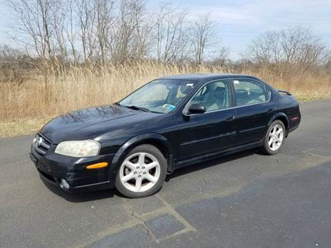 2002 Nissan Maxima for sale at Positive Auto Sales, LLC in Hasbrouck Heights NJ