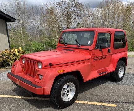 1991 Jeep Wrangler for sale in Canton, GA
