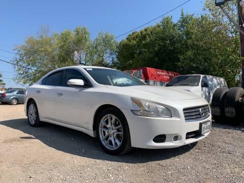 2010 Nissan Maxima for sale at C.J. AUTO SALES llc. in San Antonio TX