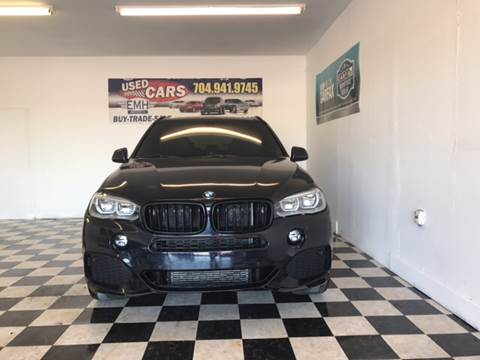 2014 BMW X5 for sale at EMH Imports LLC in Monroe NC