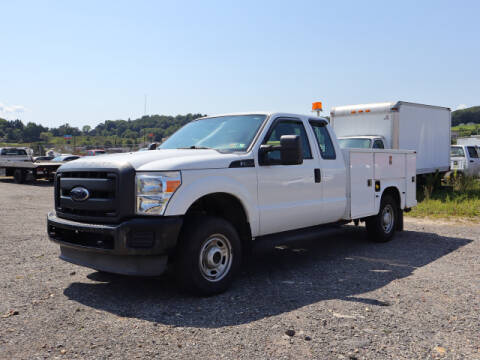 2013 Ford F-250 Super Duty for sale at Terrys Auto Sales in Somerset PA