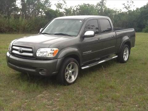 2005 Toyota Tundra for sale at AUTO COLLECTION OF SOUTH MIAMI in Miami FL
