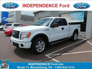 2010 Ford F-150 for sale in Bloomsburg, PA