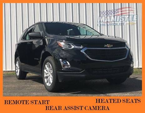 2019 Chevrolet Equinox for sale in Manistee, MI