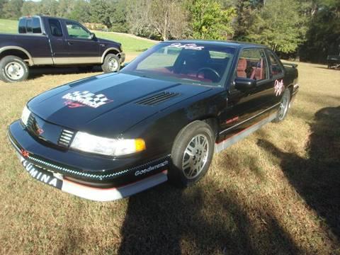 1991 Chevrolet Lumina for sale in Gray Court, SC