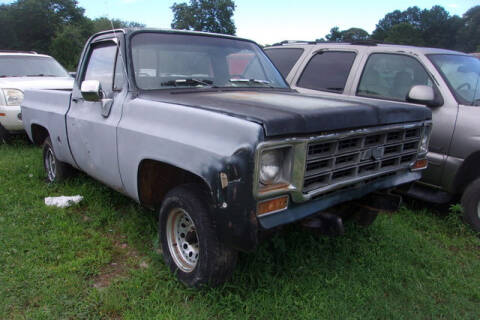 1976 Chevrolet C/K 10 Series for sale at Classic Cars of South Carolina in Gray Court SC