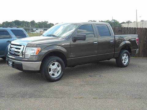 2009 Ford F-150 for sale in Hattiesburg, MS