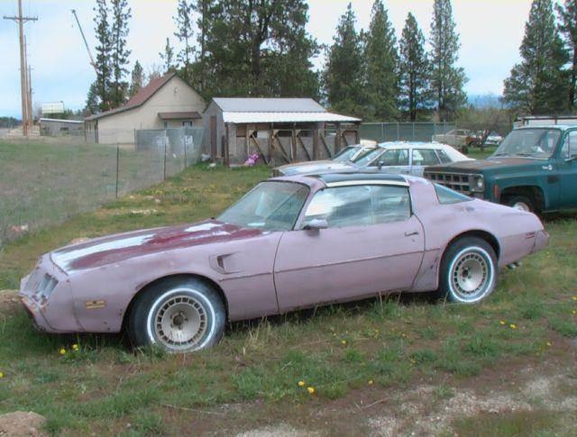 1981 Pontiac Trans Am Turbo - Stevensville MT
