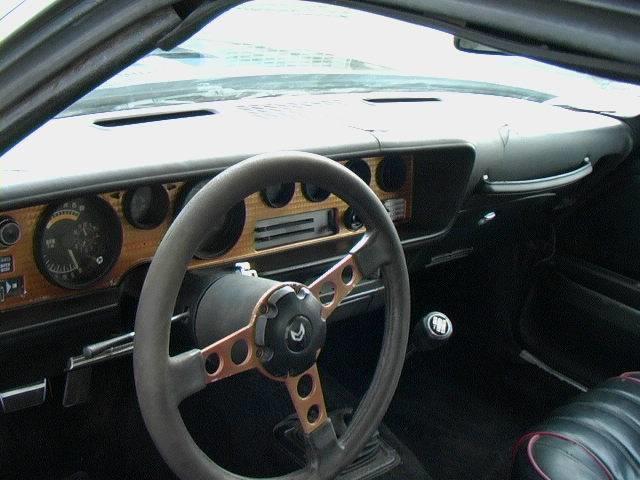 1976 Pontiac Firebird Trans Am - Stevensville MT