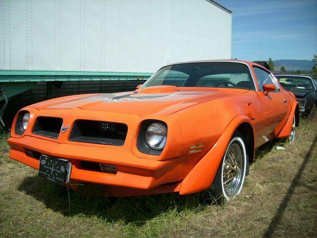 1976 Pontiac Trans Am Trans Am  - Stevensville MT