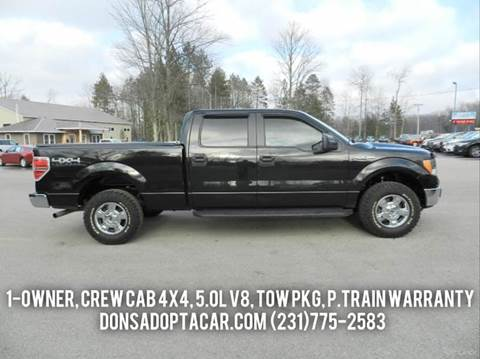 2014 Ford F-150 for sale in Cadillac, MI