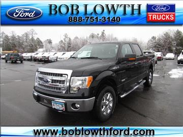 2013 Ford F-150