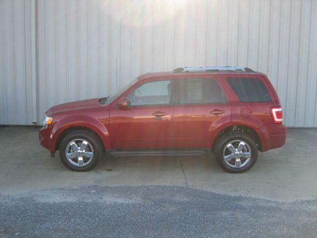 2011 Ford Escape for sale in Albertville AL