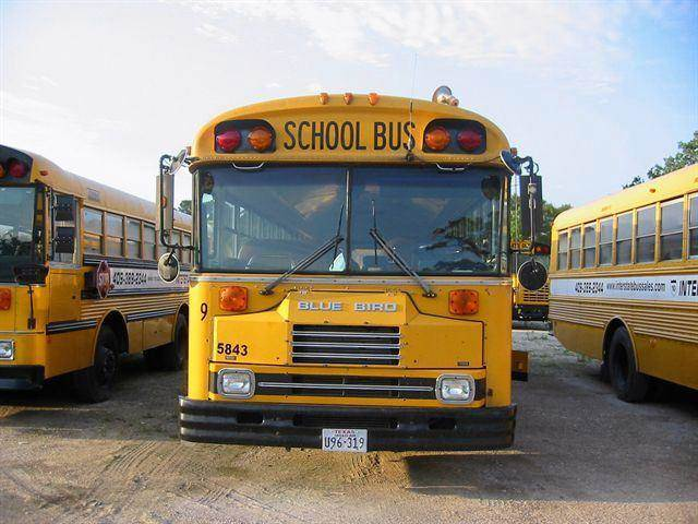1991 BLUEBIRD TC2000 SCHOOL BUS - WALLISVILLE TX