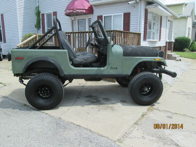 1979 Jeep Wrangler for sale in Shelbyville IN