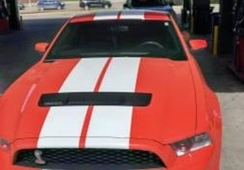 2010 Ford Shelby GT500 for sale in Calabasas, CA