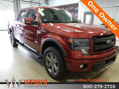 2014 Ford F-150 for sale in Detroit Lakes, MN