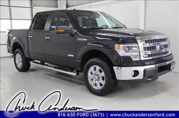 2014 Ford F-150 for sale in Excelsior Springs MO