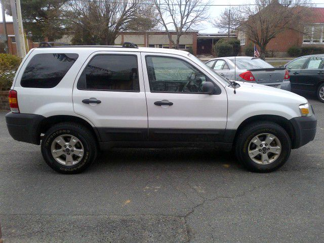 2007 Ford Escape For Sale With Photos Carfax