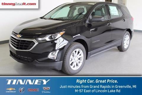 2018 Chevrolet Equinox for sale in Greenville, MI