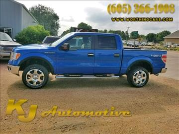 2009 Ford F-150 for sale in Worthing, SD
