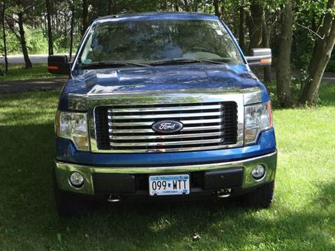 2010 Ford F-150 for sale in Burtrum MN