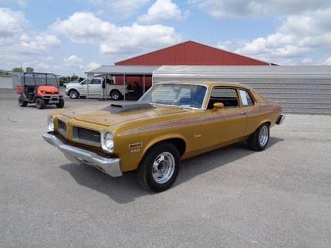 1973 Pontiac Ventura for sale in Staunton, IL