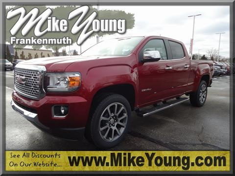 2019 GMC Canyon for sale in Frankenmuth, MI