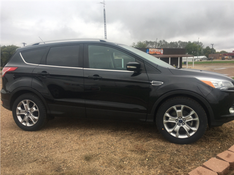 2014 Ford Escape for sale in Wagner, SD