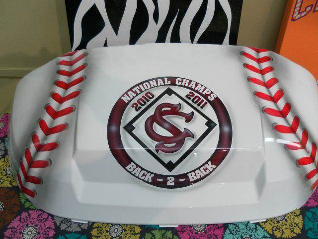 2015 USC Gamecocks Baseball  - Effingham SC