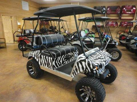 2015 Misc. Zebra