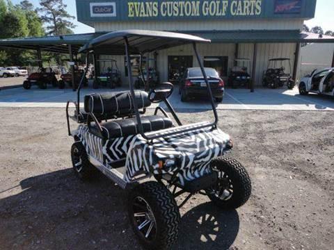 2015 Misc. Zebra Cart II