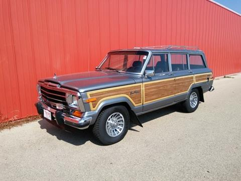 1991 Jeep Grand Wagoneer for sale in Dubuque, IA