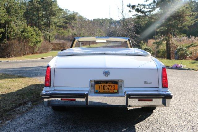 Cadillac And Cash Ny Autos Post