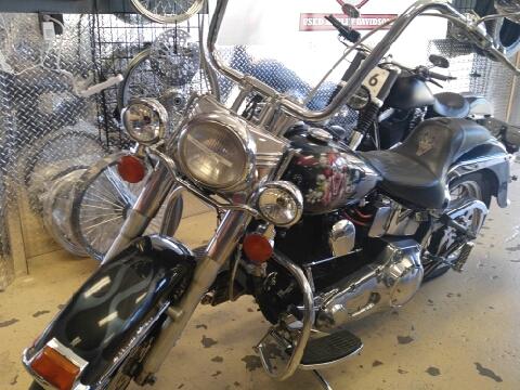 1995 Harley-Davidson Softtail