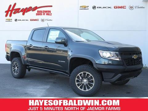 2018 Chevrolet Colorado for sale in Alto GA
