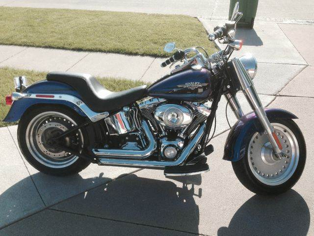 2010 Harley-Davidson Softtail