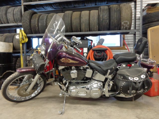1997 Harley-Davidson Softtail
