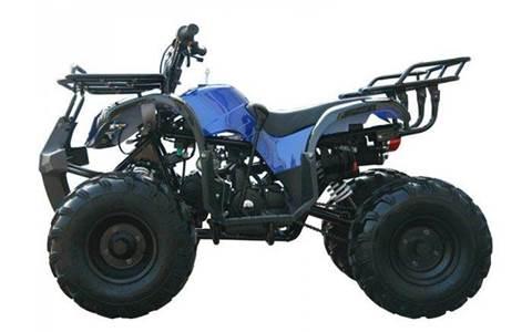 2016 TAOTAO 125 CC ATV for sale in Mandeville, LA