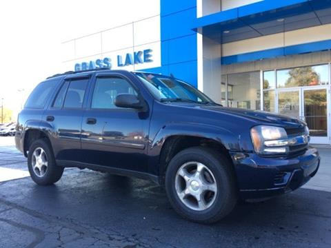 2007 Chevrolet TrailBlazer for sale in Chelsea MI