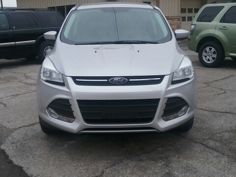 2014 Ford Escape for sale in Tecumseh, MI