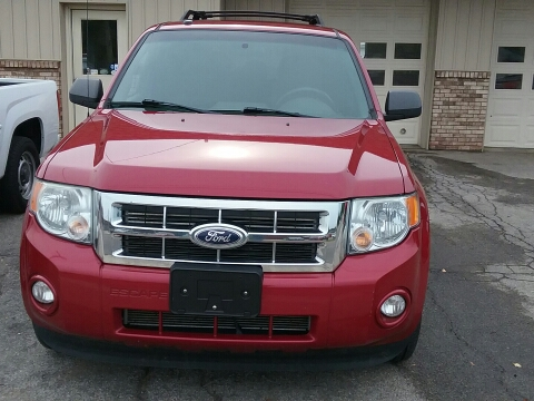 2010 Ford Escape for sale in Tecumseh, MI