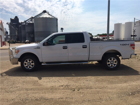 2014 Ford F-150 for sale in Philip, SD