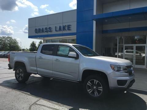 2017 Chevrolet Colorado for sale in Grass Lake, MI