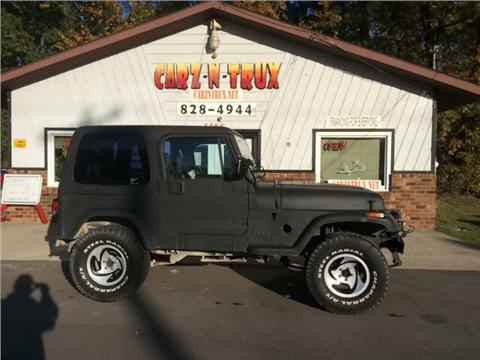 1994 Jeep Wrangler for sale in Twin Lake, MI